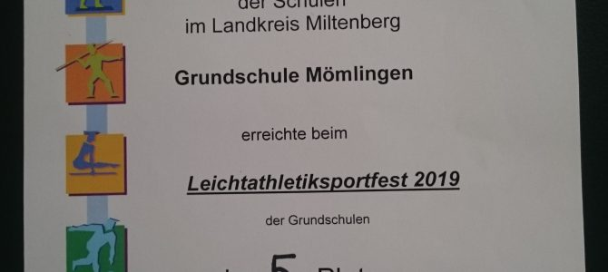 Leichtathletiksportfest 2019 Bürgstadt